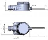ДТС125Л конструктивное исполнение